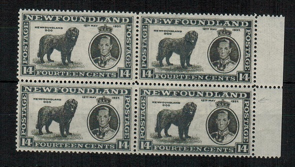 NEWFOUNDLAND - 1937 14c black U/M block of 4 with MAJOR RE-ENTRY.  SG 216.
